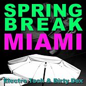 Spring Break Miami 2010 by Various Artists