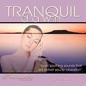 Play & Download Tranquil Dawn by Llewellyn | Napster