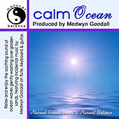 Play & Download Calm Ocean Natural Sounds by Medwyn Goodall | Napster