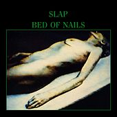 Bed of Nails (An index of Abstract Electronics) by Slap