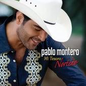 Mi Tesoro Norteño by Pablo Montero