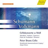 SCHUMANN, R. / VOLKMANN, F.R.: Cello Concertos by Peter Bruns