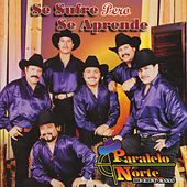 Play & Download Se sufre pero se aprende by Paralelo Norte De Chuy Casas | Napster