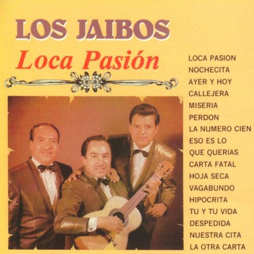 Play & Download Loca Pasión by Los Jaibos | Napster