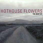 Play & Download The Best Of Hothouse Flowers by Hothouse Flowers | Napster