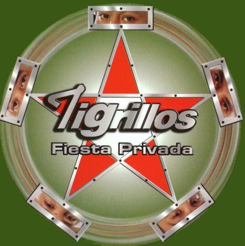 Fiesta Privada by Los Tigrillos