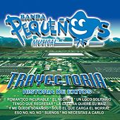 Play & Download Trayectoria by Banda Pequeños Musical | Napster