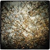 Play & Download Thistled Spring by Horse Feathers | Napster