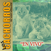 Play & Download En Vivo by Los Cachorros de Juan Villarreal | Napster