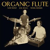 Play & Download Organic Flute by Mark Ferber | Napster