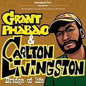 Play & Download Bridge Of Life by Carlton Livingston | Napster
