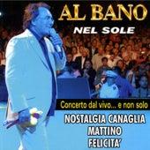 Play & Download Concerto dal vivo ..e non solo by Al Bano | Napster