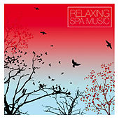 Play & Download Relaxing Spa Music by Various Artists | Napster