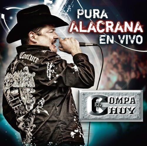 Pura Alacrana En Vivo by El Compa Chuy