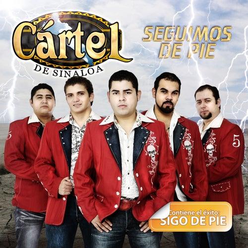Play & Download Seguimos De Pie by Cártel De Sinaloa | Napster
