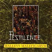 Malleus Maleficarum by Pestilence