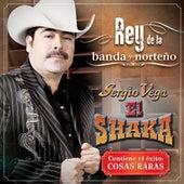 Rey De La Banda Y Norteño by Sergio Vega (1)