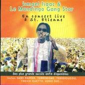 Play & Download Concert Live à Saint-Etienne by Ismaël Isaac | Napster