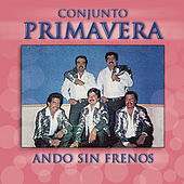 Play & Download Ando Sin Frenos by Conjunto Primavera | Napster