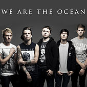 These Days, I Have Nothing by We Are The Ocean