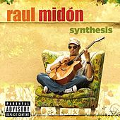 Play & Download Synthesis by Raul Midon | Napster