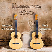 Flamenco Vivo by Antonio Da Costa