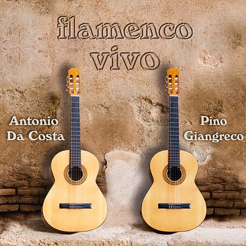 Flamenco Vivo by Antonio Da Costa