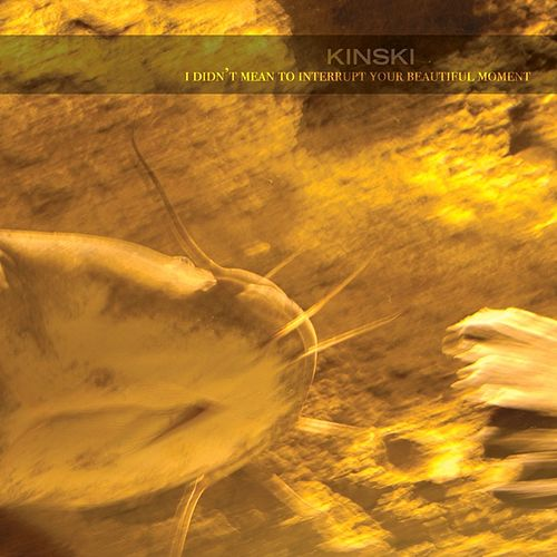 Play & Download I Didn't Mean To Interrupt Your Beautiful Moment by Kinski | Napster