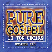 Pure Gospel - 10 Top Choirs - Volume 3 by Various Artists