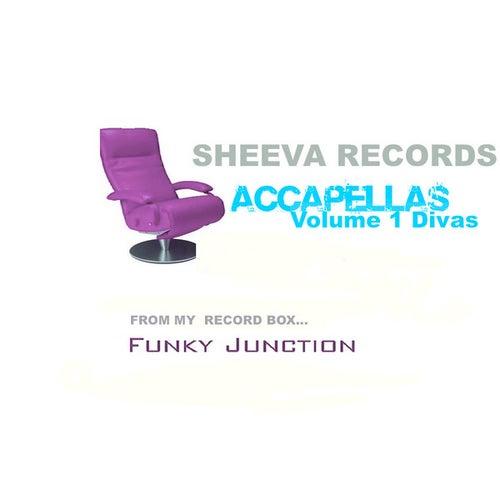 Sheeva Accapellas Volume 1 Divas by Various Artists