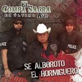 Play & Download Se Alborotó El Hormiguero by El Compa Sacra | Napster