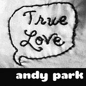 Play & Download True Love by Andy Park | Napster