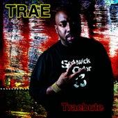 Traebute by Trae