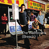 Play & Download Breach by The Wallflowers | Napster