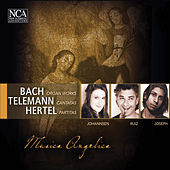 Bach, Telemann & Hertel: Organ Works, Cantatas & Partitas by Various Artists