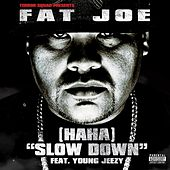 (Ha Ha) Slow Down (feat. Young Jeezy) by Fat Joe