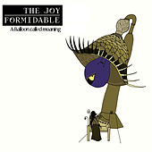 A Balloon Called Moaning by The Joy Formidable