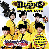 Play & Download Volando Alto by Los Halcones De San Luis | Napster