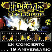 Play & Download En Concierto...19 Aniversario by Los Halcones De San Luis | Napster