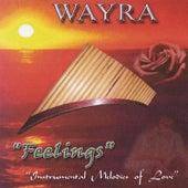 Feelings by Wayra