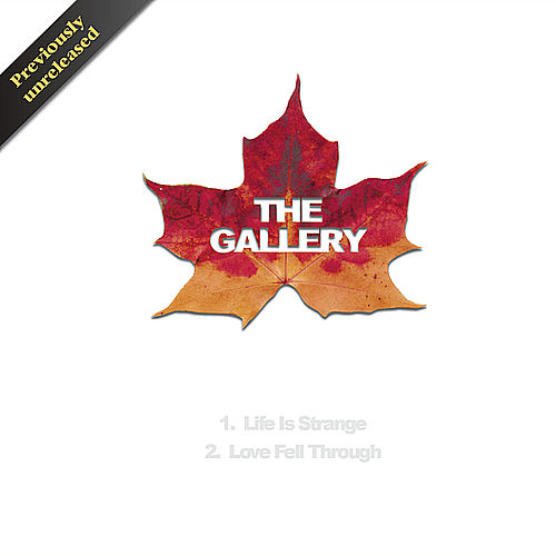 The Leaf Album by Gallery