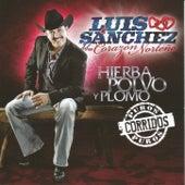 Play & Download Hierba Polvo y Plomo - Puros Corridos by Luis Sanchez y su Corazon Norteño | Napster