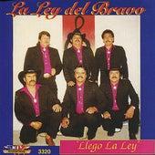Llego la Ley by La Ley Del Bravo