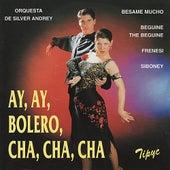 Ay, Ay, Bolero, Cha, Cha, Cha by Orquesta de Silver Andrey