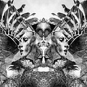 Play & Download Natural Selection by UNKLE | Napster