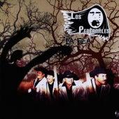 Play & Download La Fey by Los Pedernales | Napster