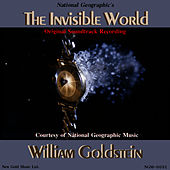 Play & Download The Invisible World by William Goldstein   Napster