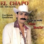 Play & Download Con Banda Sinaloense by El Chapo De Sinaloa | Napster