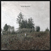 Play & Download Saint Bartlett by Damien Jurado | Napster