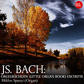 Bach: Orgelbüchlein (Little Organ Book) Excerpts by Miklos Spanyi